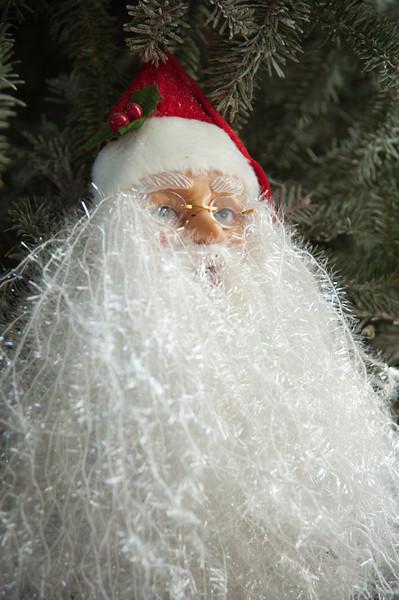 2013 Buras Christmas