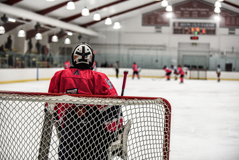 2020 Pink the Rink Dully103.jpg