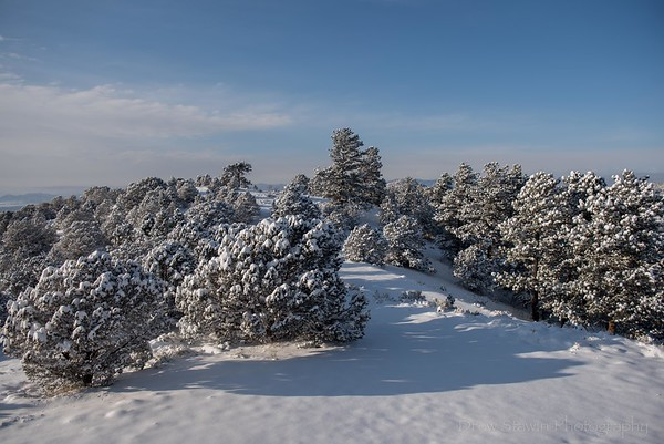 First snow - 2020.10.26