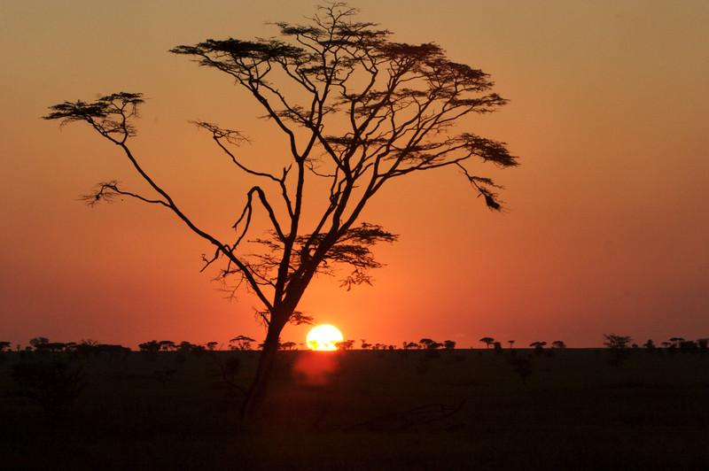 Tanzania - 08.jpg