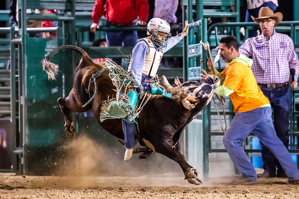 2021 AK Bucking Bulls - SB Sheriffs Rodeo
