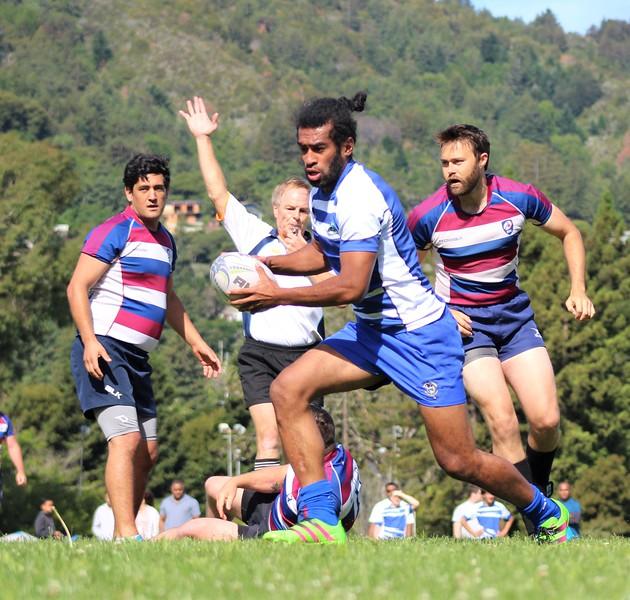 sharks-rugby7s-facebook-photos-1 (8).jpg