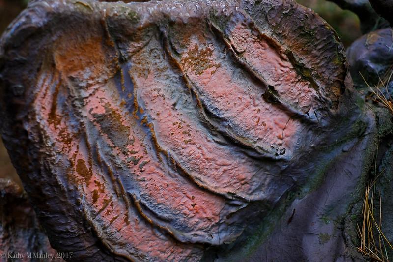 Dinolandss-29.jpg