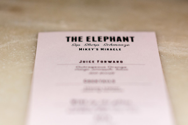 """Mikey's Miracle Foundation """"Cocktails For A Cause"""" The Elephant"""