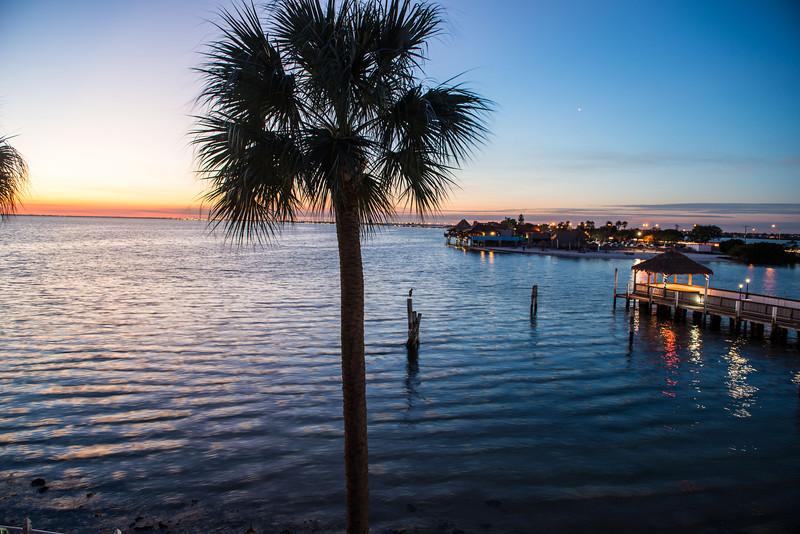 Tampa Jam-1402.jpg