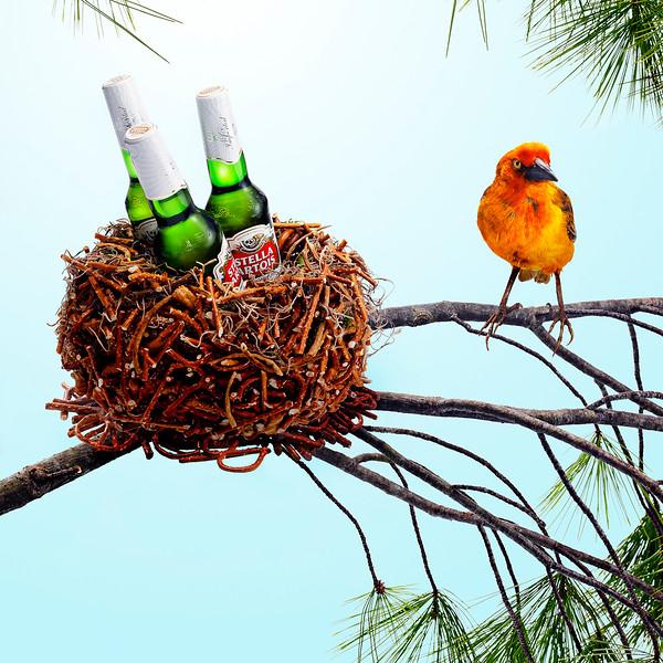 Photographer-David-Arky-Conceptual-Still-Life-Creative-Space-Artists-Management-6-Beer-Nest.jpg