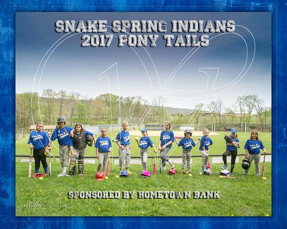 Snake Spring Indians 2017 PT Hometown