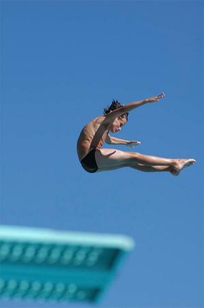 2006 High Dive Champions
