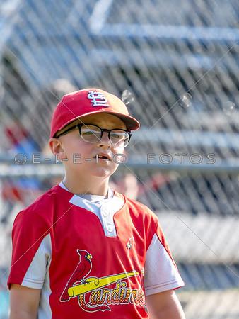 20190528 Cardinals vs Reds