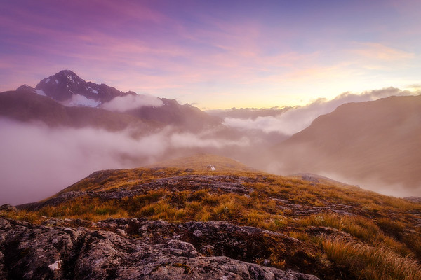 Autumn Roam in Fiordland