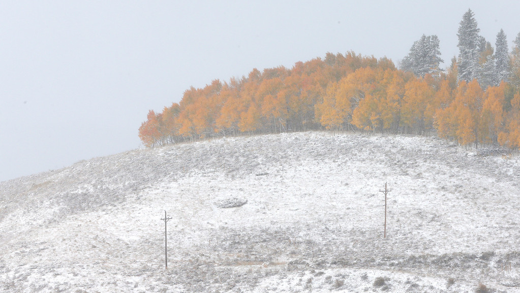 . Fresh snow dusts a hillside where Aspen trees turn yellow each Autumn, near Frisco, Colo., Friday Oct. 4, 2013. Powerful storms moved into the Midwest on Friday due to a cold weather system gaining strength as it traveled east from Colorado and Wyoming. (AP Photo/Brennan Linsley)