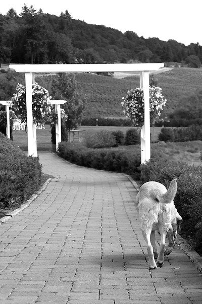 April checking out the winery grounds