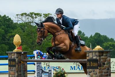 Upperville Horse