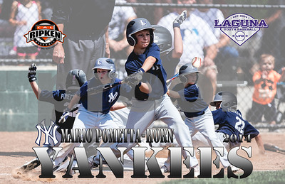2014 Laguna Youth Baseball Posters