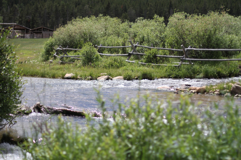 The freezing, trout filled stream that supplied the ranch's water. We crossed this stream with the horses on most rides.