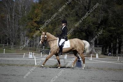 091129 USEA Horse Trial