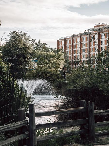 20200514 LNottingham 6.jpg