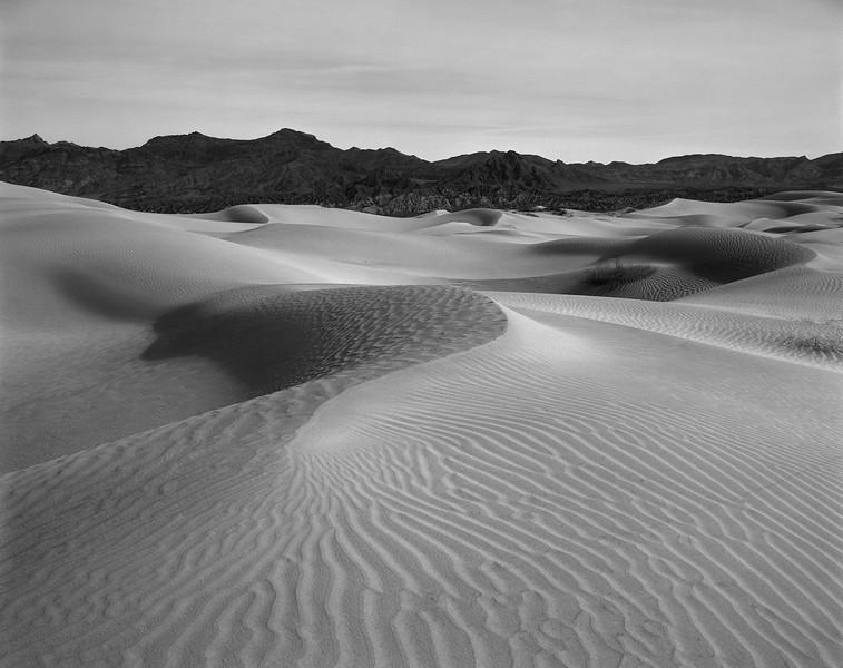 Mesquite Dunes B&W 3.jpg