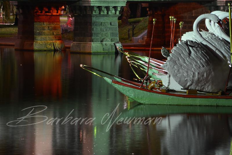 SwanBoattipsWtrmk.jpg