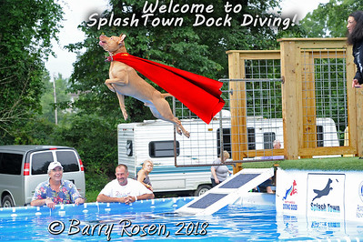 Splash Town Dock Diving (NADD), August 18, 2018