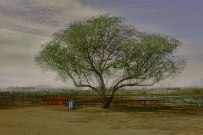 Social Distancing - Wickenburg, AZ.