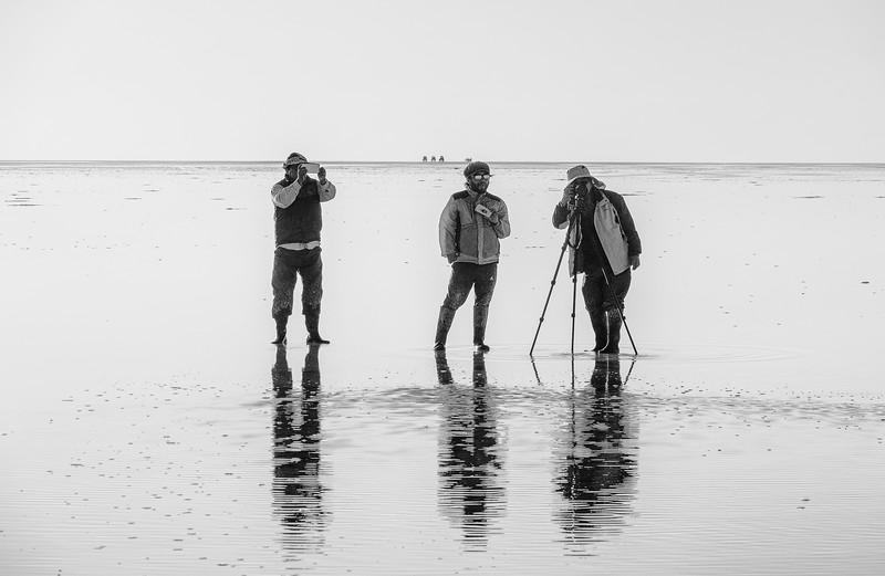 salt lake9-1.jpg
