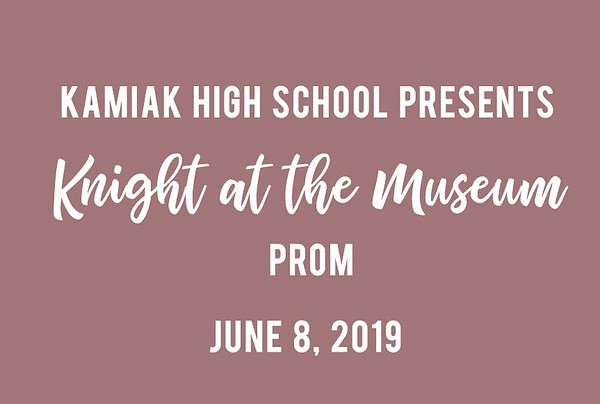 Kamiak High School Knight at the Museum Prom