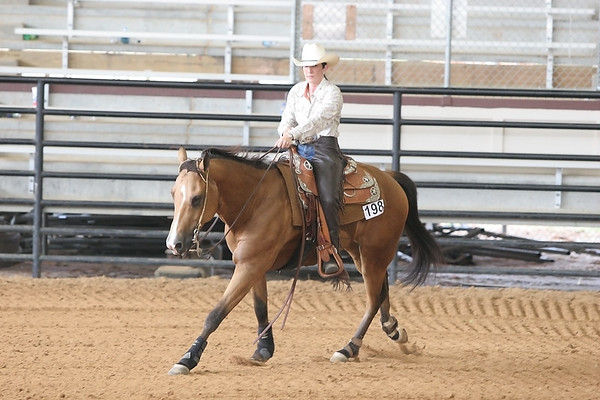 LQHA Louisiana Quarter Horse Association