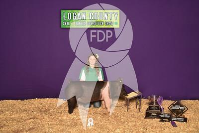 Logan County Jr. Livestock Show