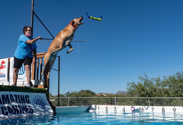 2020 Sept Animal Watchers NADD Trials