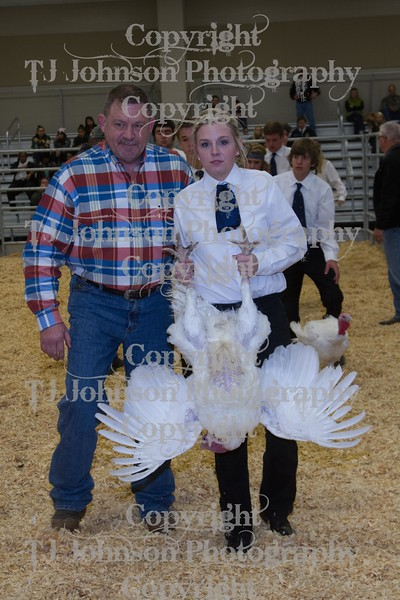2014 KISD Livestock Show Broiler