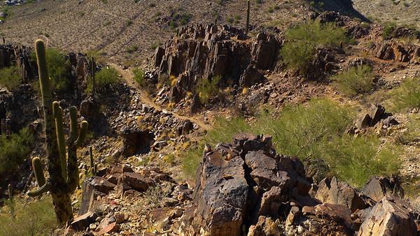 Arizona 2010 Jan