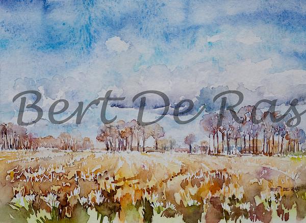 Bert De Ras Aquarel