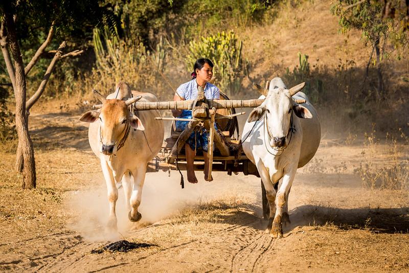 087-Burma-Myanmar.jpg