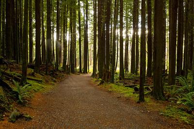 Vancouver Island, BC.