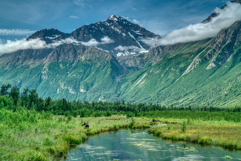 Chugach Alaska 2019-3.jpg