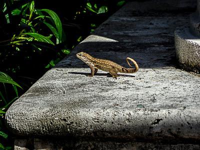 Florida February 2014