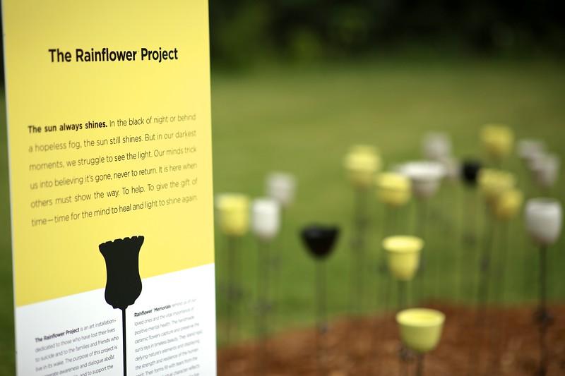 Rainflower Project 4P7A5114.jpg