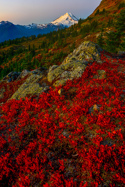 Yellow Aster Butte_9_17 (127 of 236)-Edit.jpg