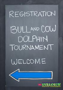 Bull&Cow Dolphin Tournament 2019