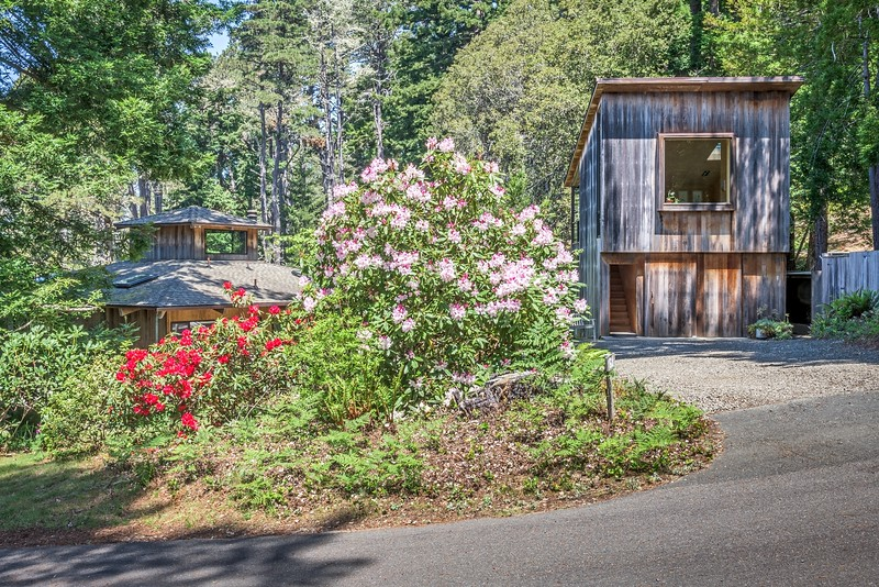 Front Driveway Pine Tree Close, Sea Ranch, California