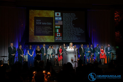 NDF Arts Gala - Nov. 17, 2019