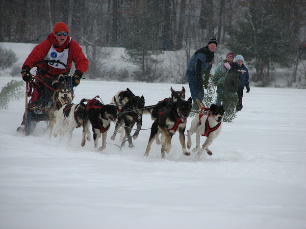 2008JAN27 Dog Sled Races, Tamworth NH
