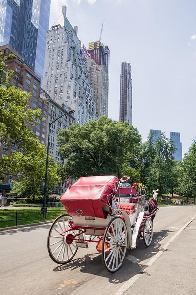 Central Park Wedding - Ronica & Hannah-12.jpg