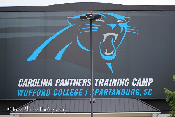 Panthers Training Camp 2013