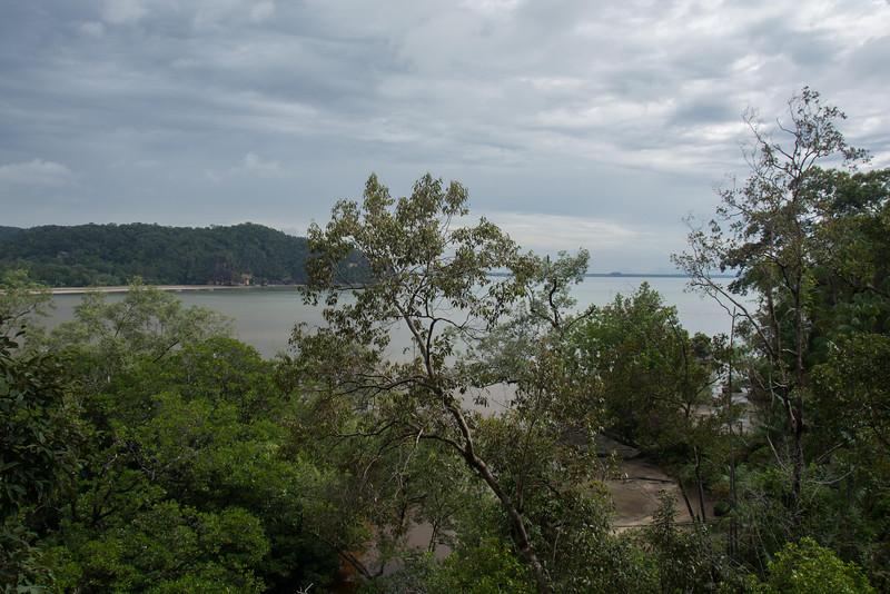 Borneo-2014-126.jpg
