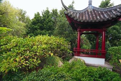 Sydney - Chinese Gardens