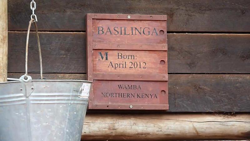 Mara and Nairobi Video 2012