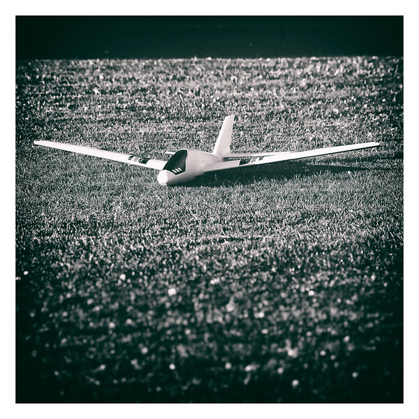 AF2A2121_.jpg