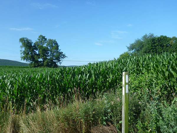 2013 Appalachian Trail July